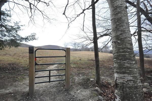 Nature-Pasture Trail at Clark Art Institute-122015