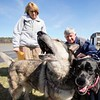 BEN GARVER — THE BERKSHIRE EAGLE<br /> Mike and Betsy Shinego of Tiverton, RI, meet  Abby, a shepherd and Julie, a Labrador, dogs saved from a high-kill shelter in South Carolina with the help of Pilots N Paws, Pittsfield Municipal Airport, Wednesday, April 17, 2019.