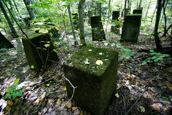 Remnants of Aspinwall at Kennedy Park-092016