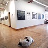 "BEN GARVER — THE BERKSHIRE EAGLE<br />  The main gallery space at the Stationery Factory is housing an exhibit called ""The Climate Issue is a Human Issue"" in cooperation with the Berkshire Environmental Action Team. The exhibit takes advantage of the building's legacy architecture. Arrow, a dog owned by Steve Sears in in the foreground guarding the art as Lena Harrington tours the gallery."