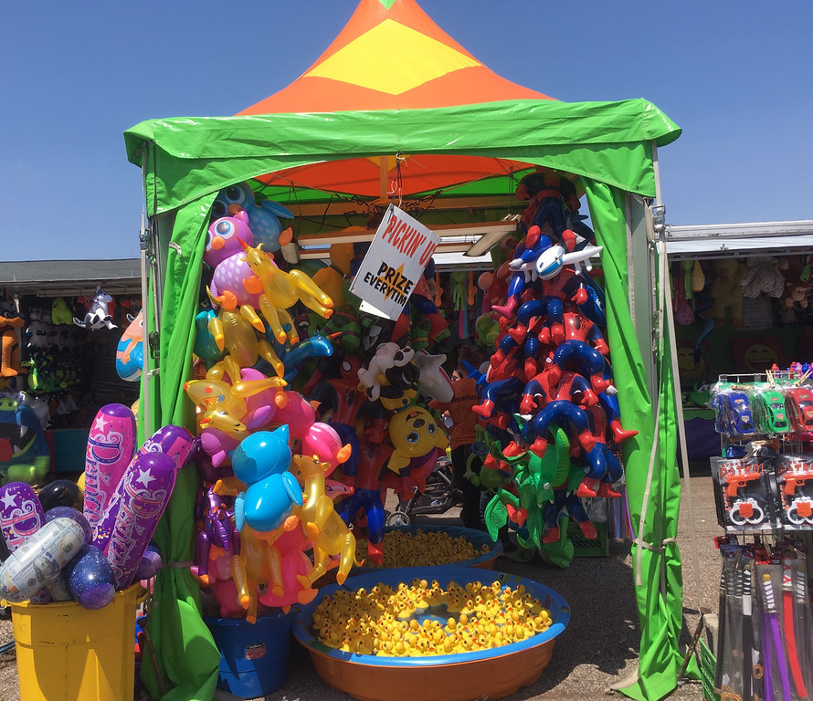 . Bill DeBus � The News-Herald <br> The Pickin\' up Duckies game awaits players on July 27 at the Lake County Fair.