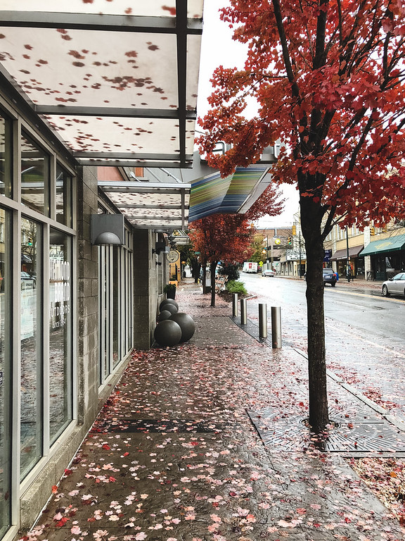 Sidewalk with fall leaves and building front