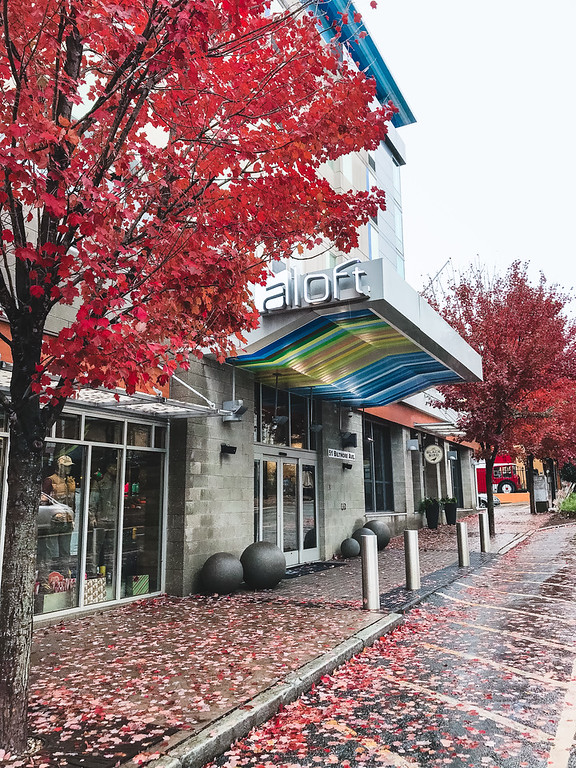 Aloft Asheville Downtown with fall colored trees.