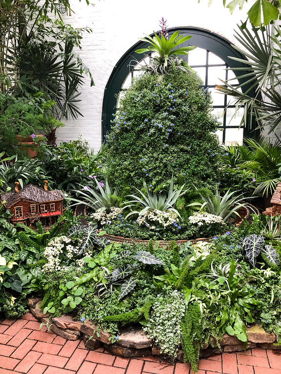 Green plants at the Biltmore Conservatory
