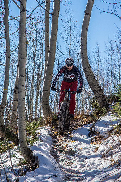 Budd Trail