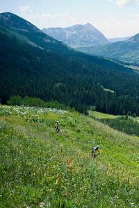 Trail 401