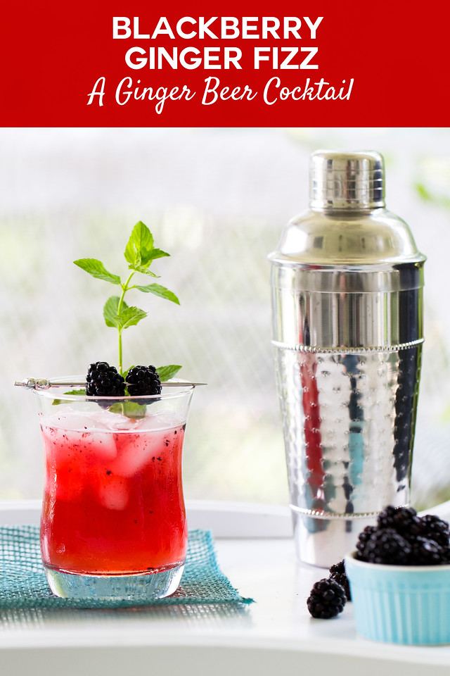 Bright red drink with blackberries and a mint sprig and a silver cocktail shaker with text overlay reading blackberry ginger fizz