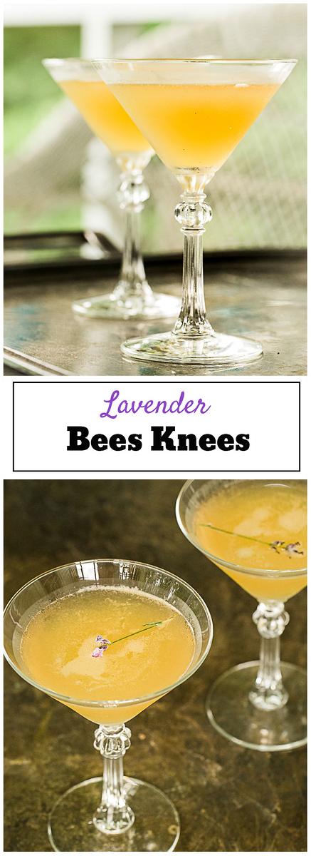 Lavender Bee's Knees - an elegant floral cocktail