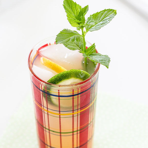 Plaid glass filled with a cocktail and garnished with lemon and lime slices and a mint sprig.