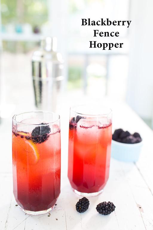 Blackberry Fence Hopper a fruity summer vodka cocktail!