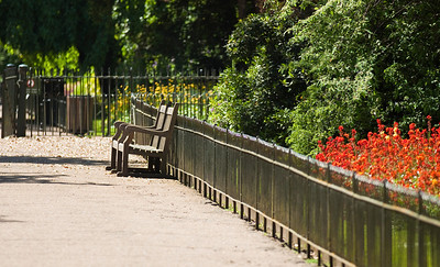 Park bench, I could have sat here all day just reading and watching people, London, United Kingdom