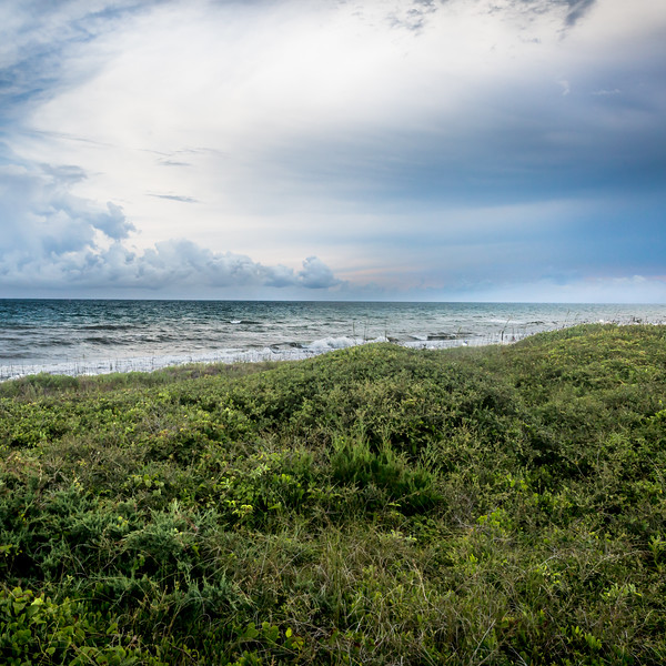 Beach 2016-16
