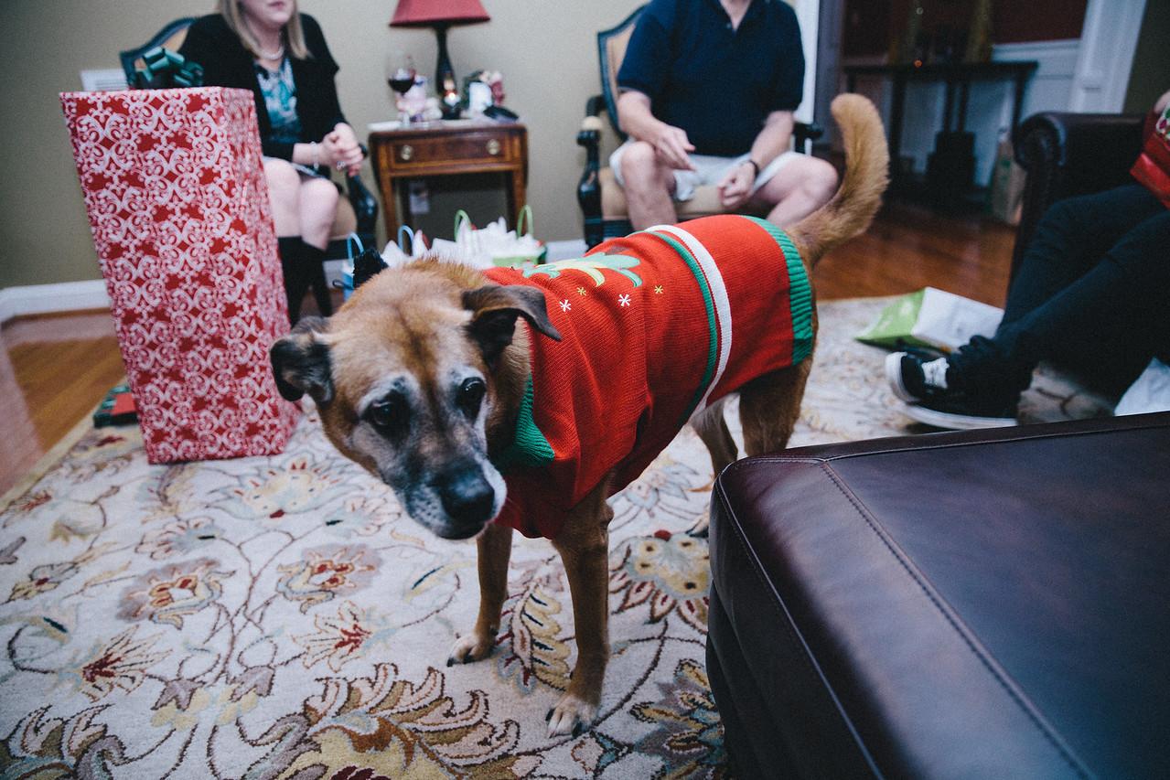 Christmas 2015 Family-20