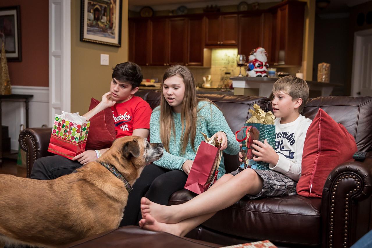Christmas 2015 Family-16
