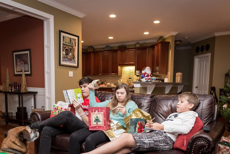 Christmas 2015 Family-25