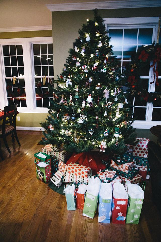 Christmas 2015 Family-8