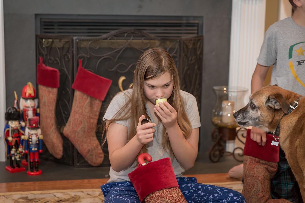Christmas 2015 Family-39