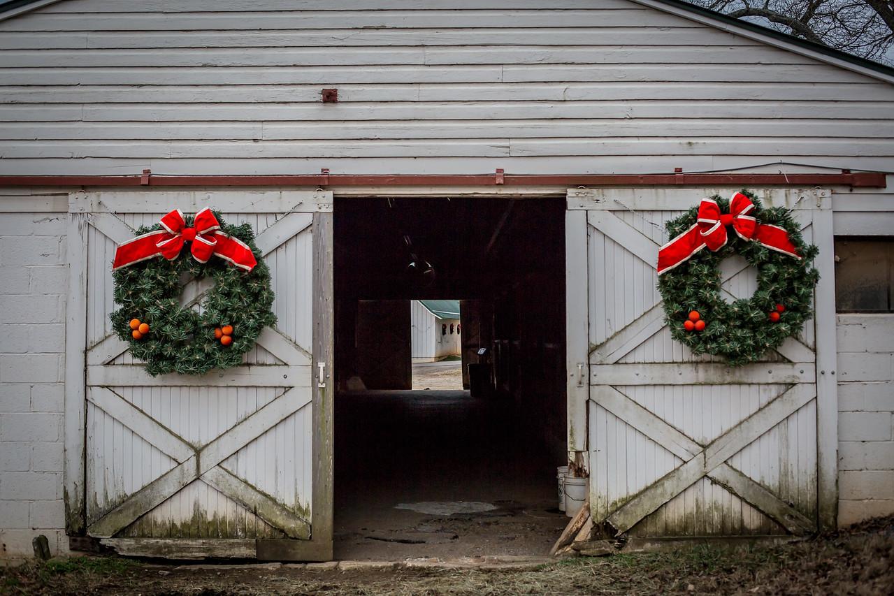 Christmas Lights 2014-26