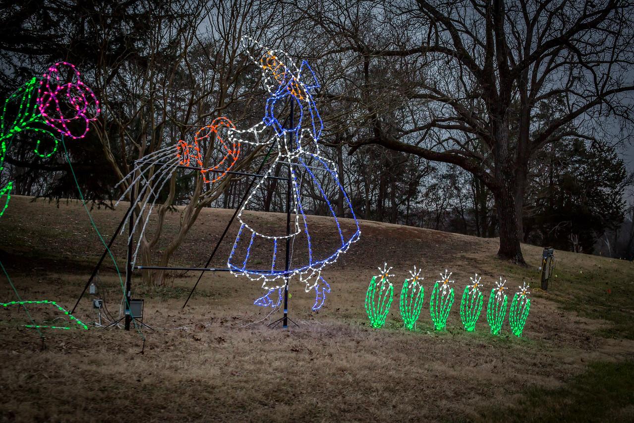 Christmas Lights 2014-49