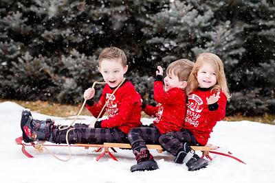 0 web TMP_0228 snow