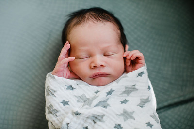 Leo - newborn