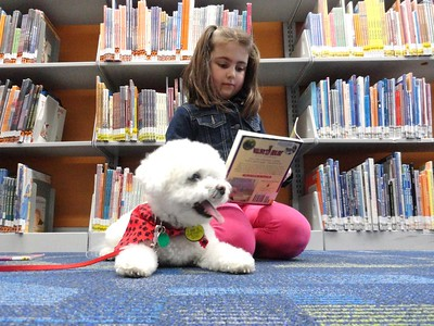 042616 Mentor Library Paws to Read