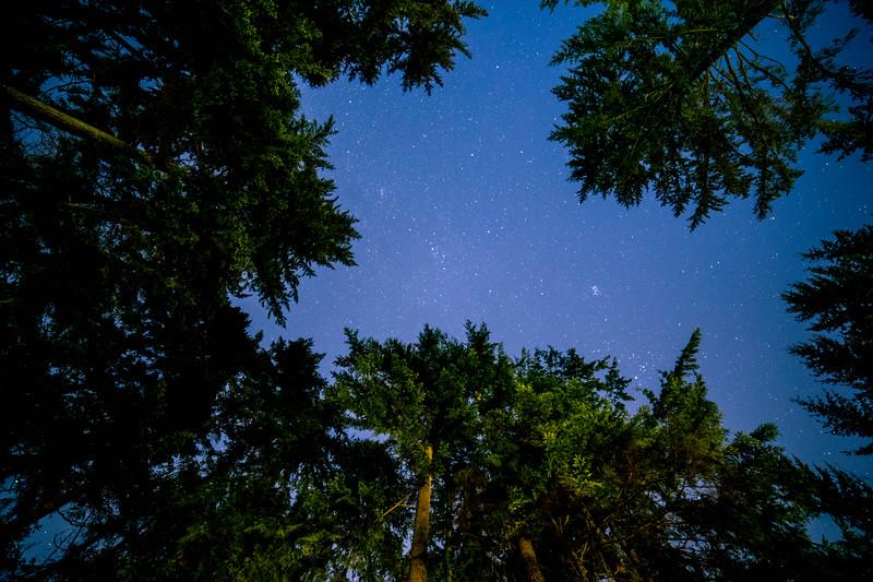 Night Sky - on the Deck