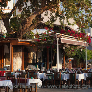 Restaurant under a tree in Kas - Kas, Antalya Province, Turkey, Asia