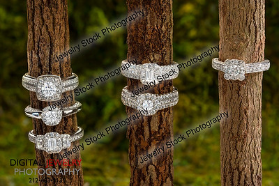 6 diamond rings on a log in nature, lifestyle image.