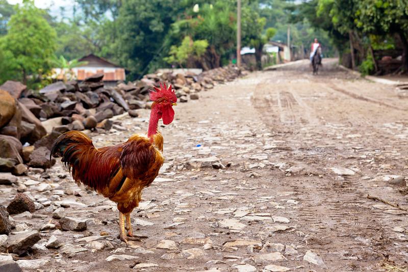Rural scene in Nicaragua.