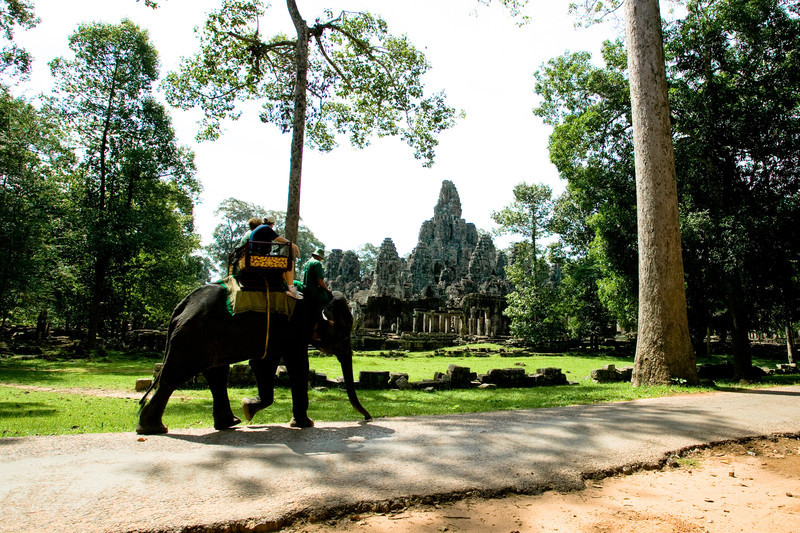 An elephant tour of one of the temples in Angkor Wat<br /> Cambodia