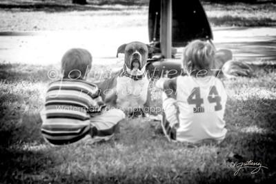 Dog to boys talk