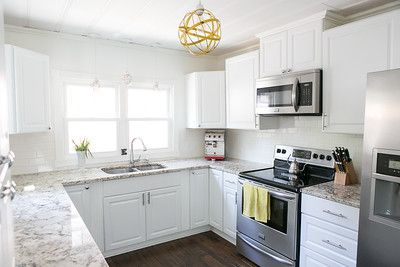 2013-HomeRemodel-Kitchen-DIY-Indep-010