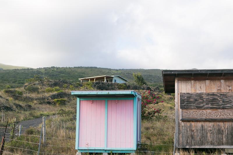 Maui-Hawaii-Honeymoon-470