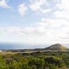 Maui-Hawaii-Honeymoon-468