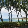 Maui-Hawaii-Honeymoon-506