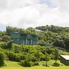 Maui-Hawaii-Honeymoon-376