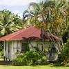 Maui-Hawaii-Honeymoon-378