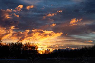 Week 2 January Sunset