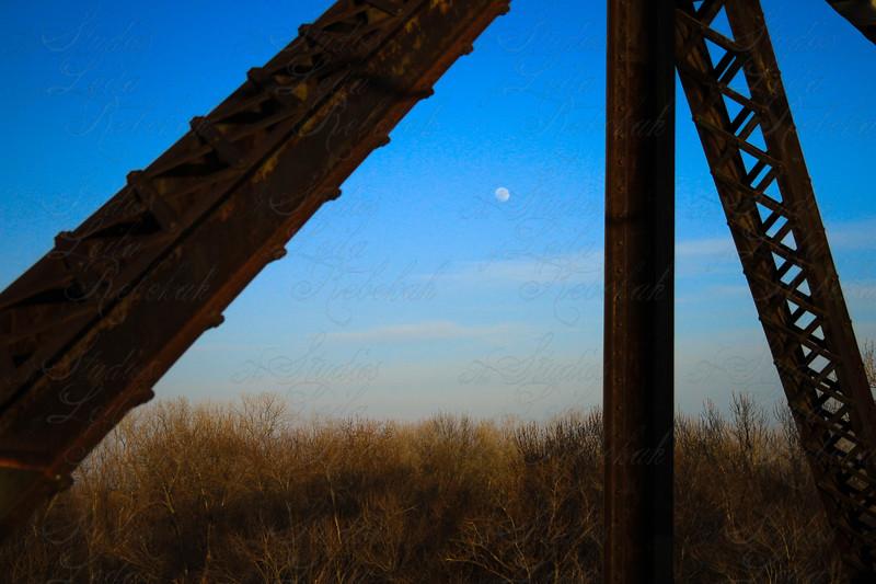 Mr Moon, to soon