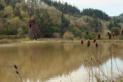 Log pond and Wigwam