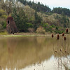 Log pond and Wigwam