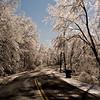 Ice Storm. Nassau, NY. 2008.
