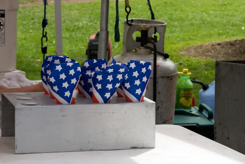 Tulip Fest. Albany, NY. 2008.
