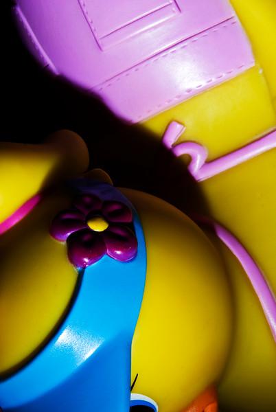 Toy Duck. Nassau, NY. 2008.