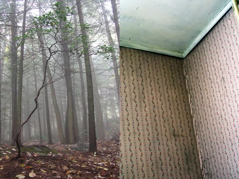 Tannersville, NY. 2006/ Newcomb, NY. 2008. 2008.