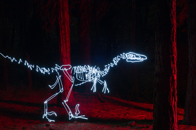 Velociraptor in the Woods