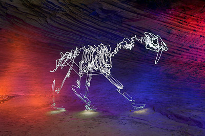 Sabre-toothed Cat in Zion