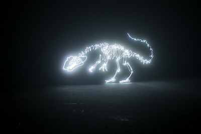 Allosaurus in the Fog