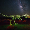 T-Rex in Bagdad, CA